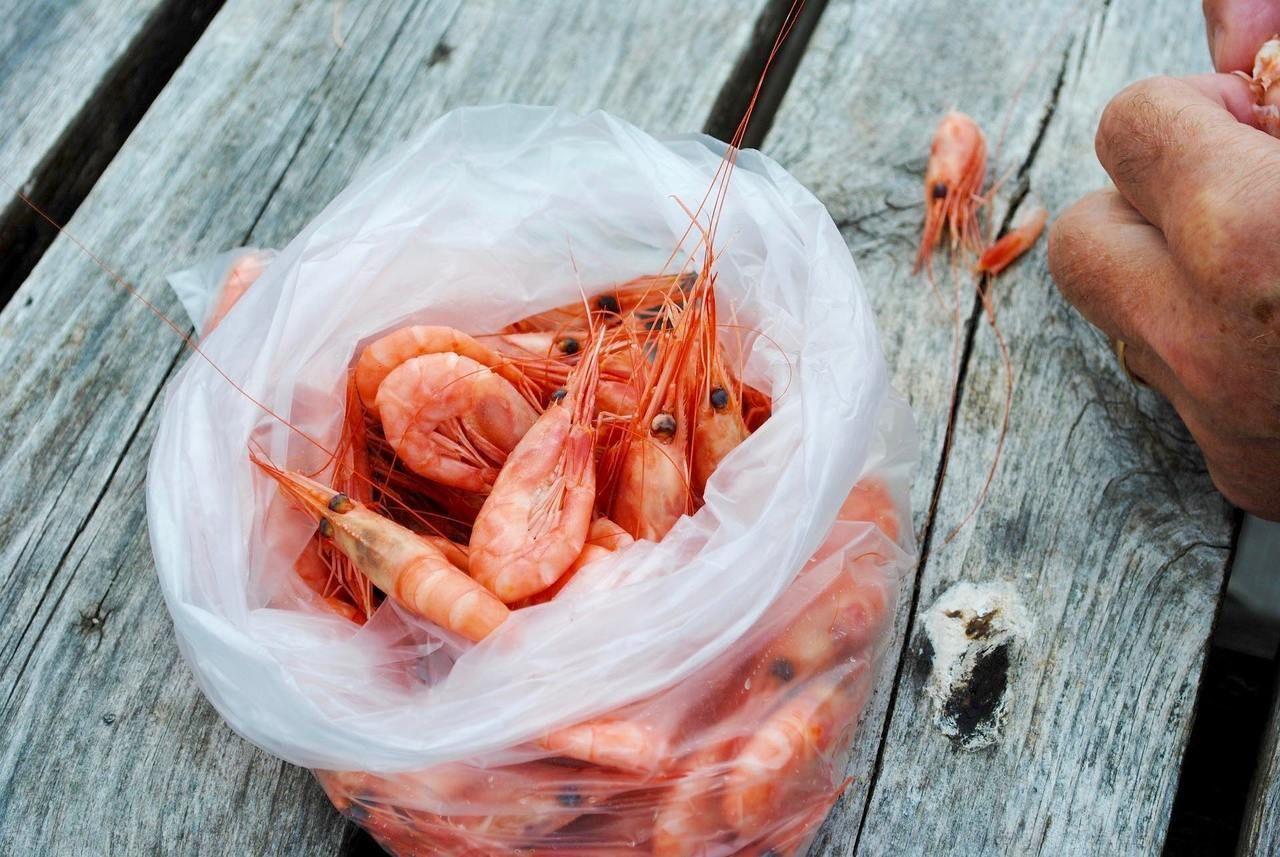 conseils aux voyageurs colombie, crevettes